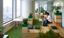 Tener ventanas, iluminación y plantas en el lugar de trabajo puede mejorar el desempeño laboral. Foto:arq.com.mx
